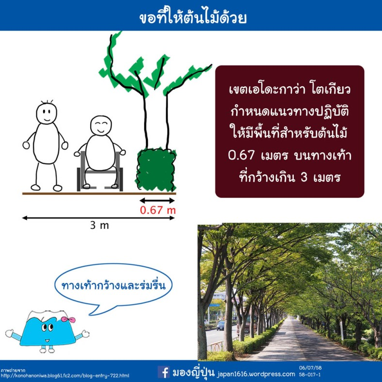 58-017 space for roadside trees